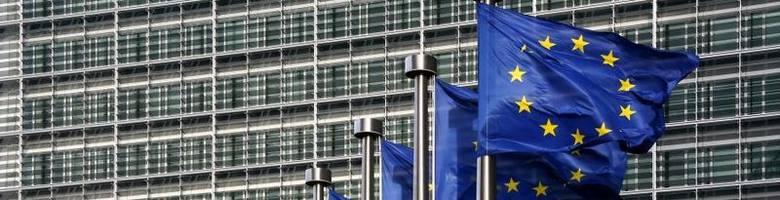 Wyniki wyborów do Europarlamentu. Przeczytaj kto zdobył mandat europosła w naszym okręgu