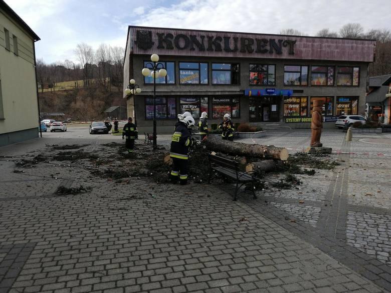 Jedyne dwa drzewa rosnące na rynku w Gilowicach zostały wycięte