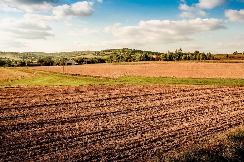 8 rzeczy, które trzeba zrobić na polskiej wsi, żeby było lepiej