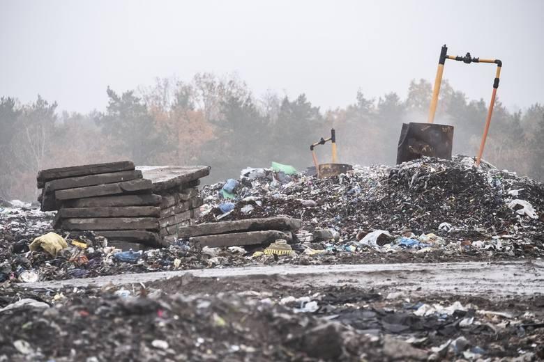 Przez sześć lat tonaż wyrzucanych przez nas mebli wzrósł ponad dziesięciokrotnie. Chociaż liczba produkowanych odpadów rośnie, dzięki segregacji i recyklingowi na tradycyjne wysypiska trafia coraz mniej śmieci