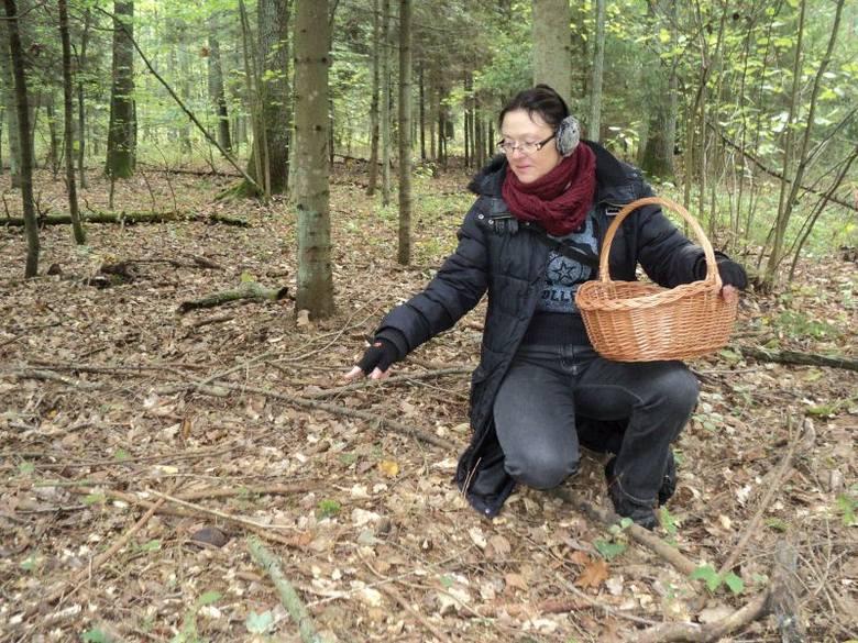 Polski granat zaczepny nr 24 pochodzący z okresu drugiej wojny światowej znalazła w sobotę w lesie w miejscowości Rydzynki (gm. Tuszyn) Joanna Wierzejska