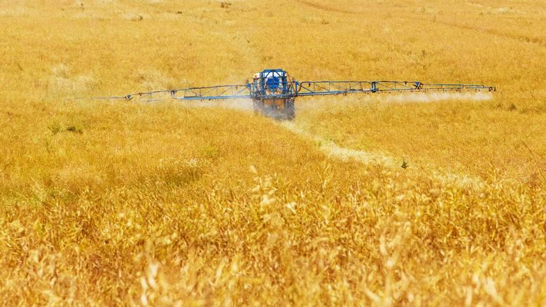 Powierzchnia gospodarstwa rolnego[lista][*]gruntów ogółem w gospodarstwie rolnym [*]zasiewów według gatunków uprawianych roślin i sposobu ich wykorzystania