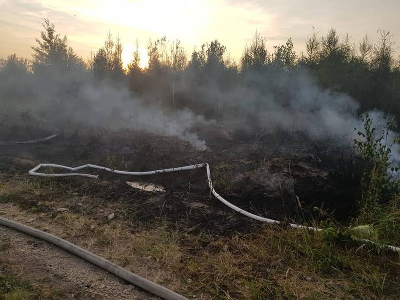 Pożar lasu w Herbach i Kalinie 20 - 21.07.2019.