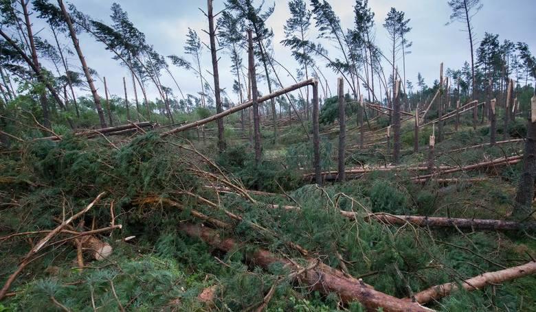 W Kobylnicy uzbierali 12 tys. zł na rzecz poszkodowanych przez nawałnicę w gminie Lipusz