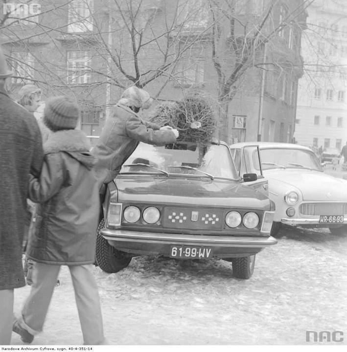 Mężczyzna mocuje choinkę na dachu samochodu.