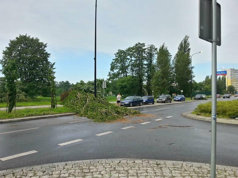 Burza w Łodzi. Nawałnica nad Łodzią. Powalone drzewa, gałęzie na drogach, zalane ulice [ZDJĘCIA]