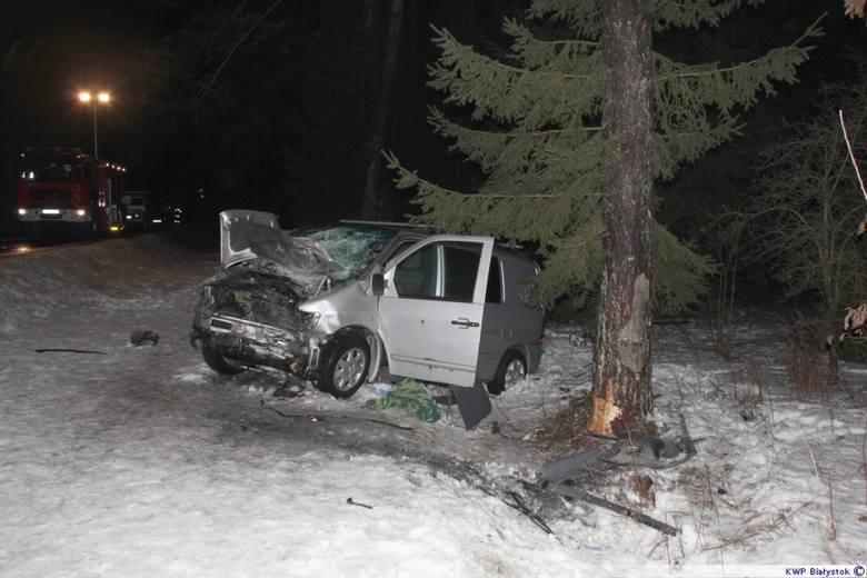 Ogrodniczki-Krasne. Kompletnie pijany kierowca spowodował śmiertelny wypadek (zdjęcia)