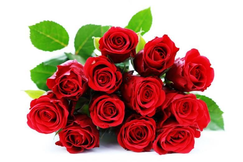 ŻYCZENIA DLA MAMYZ okazji Twojego święta Mamo przyjmij dziś ode mnie najserdeczniejsze życzenia: samych radosnych i pełnych ciepła chwil oraz najszczersze