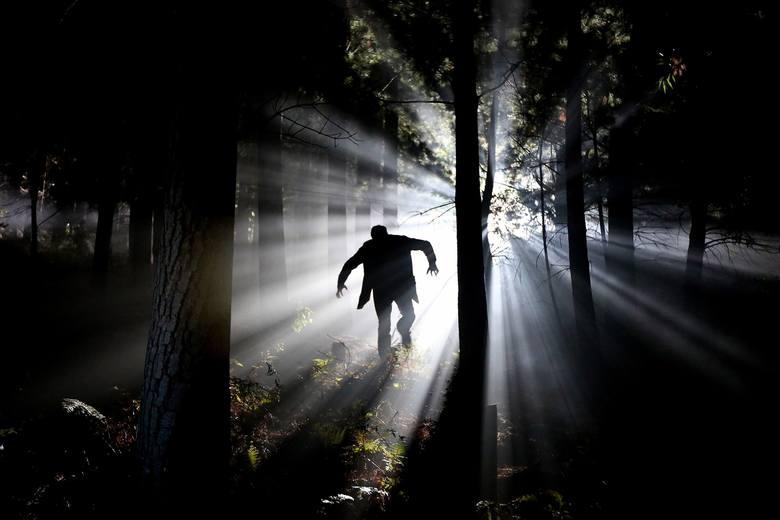 Wedle podręcznika psychiatrii, fobia to objaw lub rodzaj nerwicy lękowej polegający na unikaniu określonych sytuacji, przedmiotów, a nawet wyobrażeń