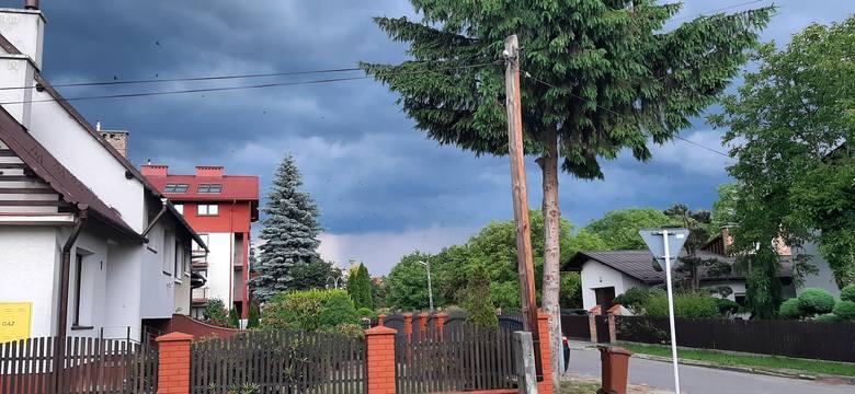 ul. Mazowiecka w Rzeszowie