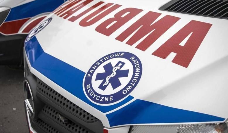 Amstaff zaatakował 8-latkę. Ojciec ranił psa, ratując dziecko