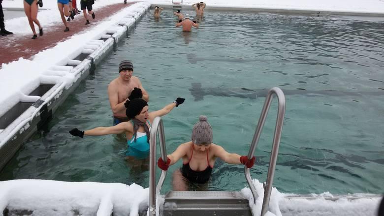Rybnickie morsy lubią śnieg. Spotkaliśmy ich na kąpielisku Ruda.