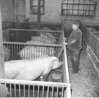 W ciągu pięćdziesięciu lat polska wieś zmieniła się diametralnie. Sprawdźcie sami!Na kolejnych stronach znajdziecie zdjęcia z lat 70.