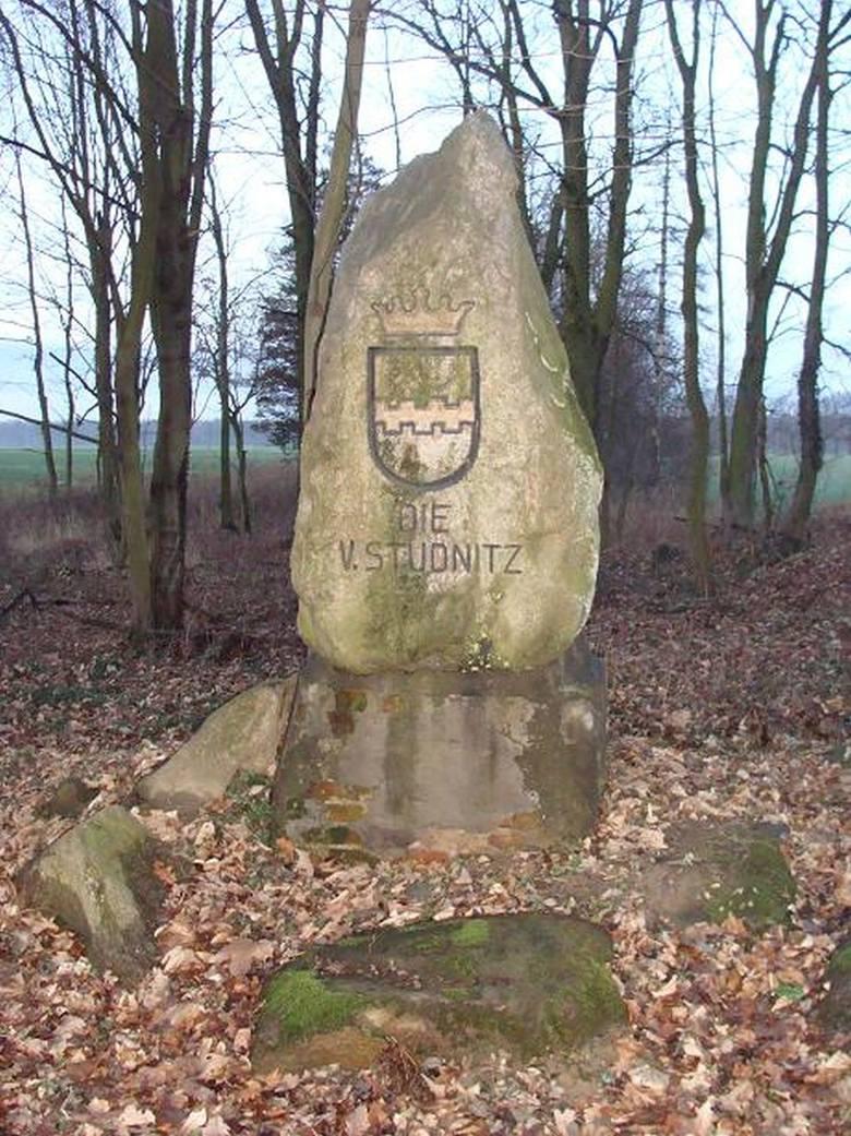 Kamień z herbem von Studnitzów.
