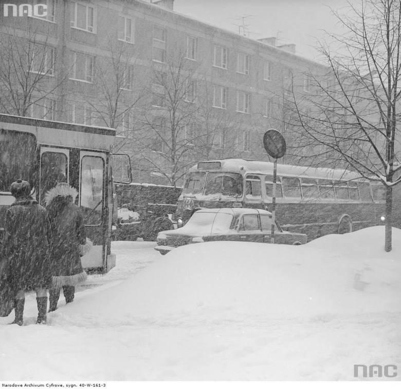 Autobusy i samochody w Warszawie