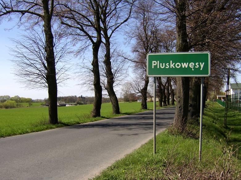 Język polski nie należy do najłatwiejszych i choć najtrudniej jest przyswoić go obcokrajowcom, to i Polakom potrafi sprawić sporo trudności. O ile jednak