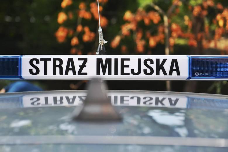 W 2019 r. mieszkańcy przekazali 81851 zgłoszeń poznańskiej straży miejskiej (w 2018 r. było 60300 zgłoszeń). Najwięcej, bo aż 52918 spraw dotyczyło