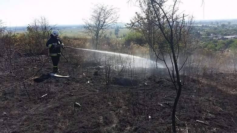 pożar w Gorzowie