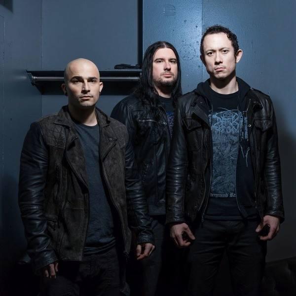 Zespół Trivium