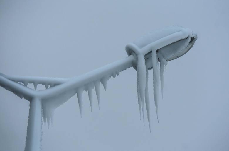 W styczniu zima nawiedziła przede wszystkim południowe i wschodnie części naszego kraju. Tam spadło najwięcej śniegu i do tego cały czas jest mroźno.