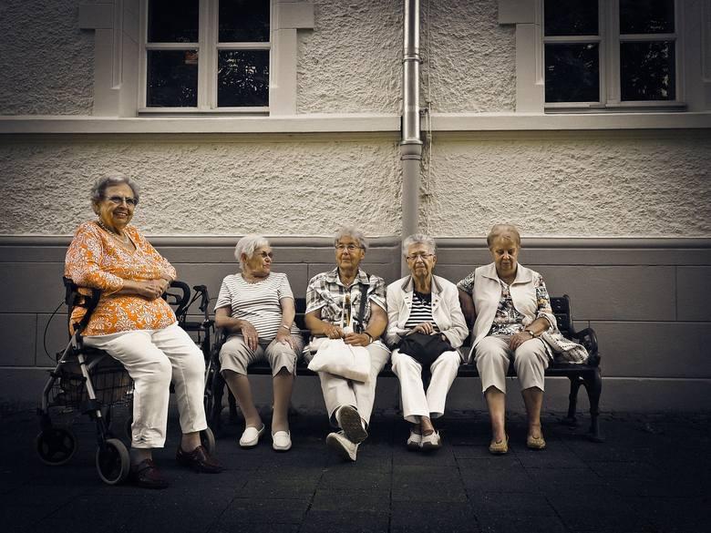 14. emerytura, wysoka waloryzacja w 2020 r. i 500 plus dla emerytów. Ile dzięki PiS otrzymają emeryci? [16.09.19 r.]