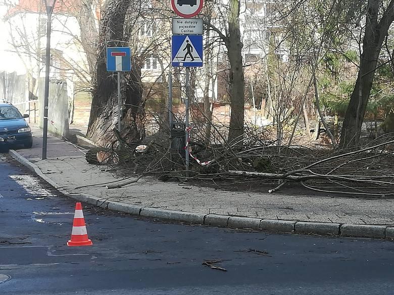 Silny wiatr w regionie. Utrudnienia na drogach i brak prądu [RAPORT]