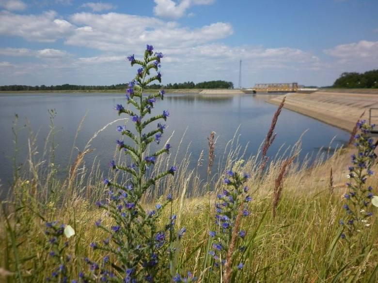 Zbiornik w Dychowie - jezioro specjalnie pod prąd
