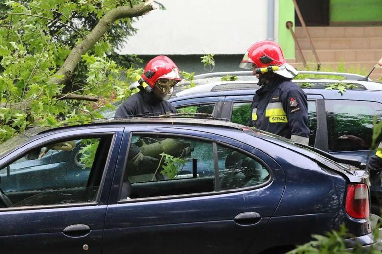 Wrocław: Drzewo runęło na ulicę. Zniszczyło samochody