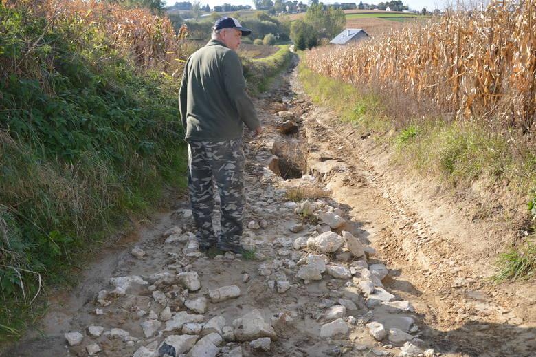 Droga gruntowa między Kowalą a Żębocinem