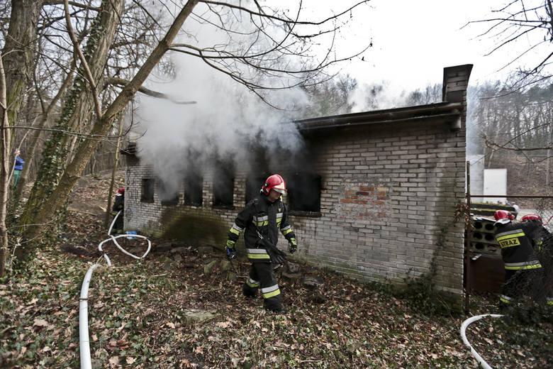 W środę (9 marca) straż pożarna gasiła pomieszczenie transformatora przy ul. Szafrana na terenie Uniwersytetu Zielonogórskiego. Z pomieszczenia wyciągnięto