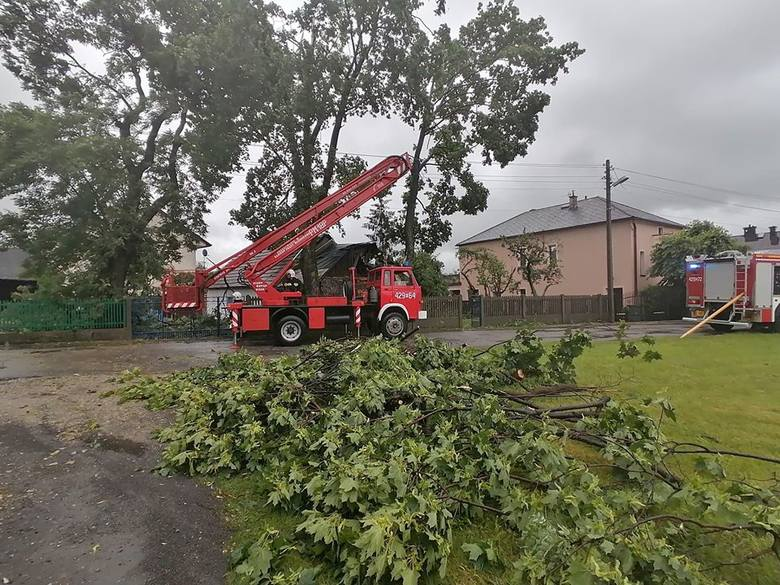Obraz po gwałtownej burzy w powiecie chrzanowskim. Połamane drzewa blokują drogi, poniszczone są ogrodzenia
