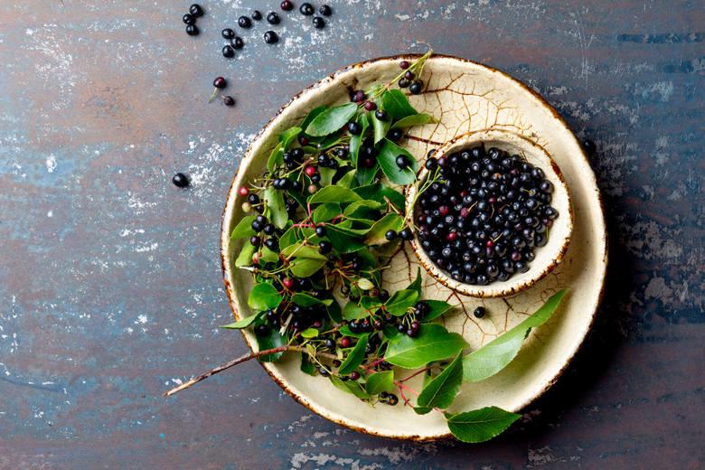 Owoce maqui (Aristotelia chilensis), nazywane po angielsku winną jagodą chilijską, mają ciemnofioletowy kolor kwaskowato-cierpki smak i wyróżniają się
