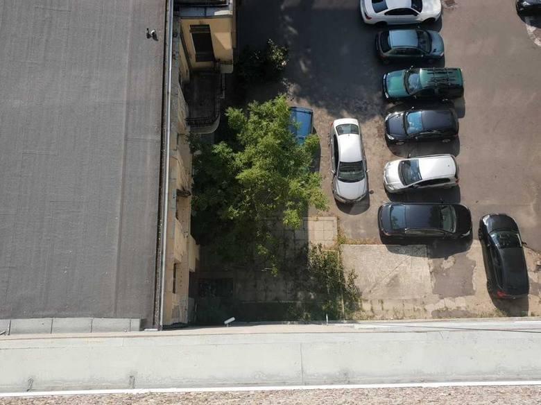 Pracownik ZIM wypadł z okna na siódmym piętrze budynku. Upadek złagodziła gałąź