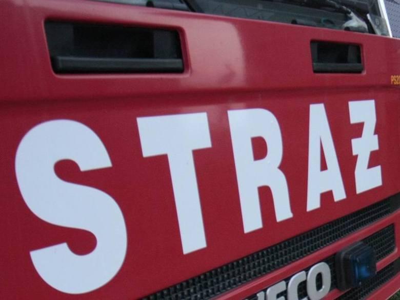 W pożarze domu w Krzyczewie zginął 56-letni mężczyzna