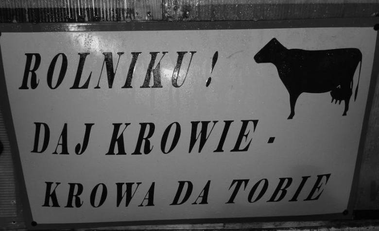 """""""Rolniku  daj krowie, krowa da tobie""""... W latach 70. gdy po rządach Władysława Gomułki nastała epoka Edwarda Gierka, w gablotach przy wejściach"""