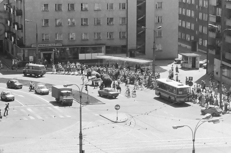 Przemarsz słoni przez centrum. Lato 1985 r. Zapraszamy Was w podróż do Gorzowa z lat 80. i 90. Kierownikiem wycieczki jest Czytelnik Grzegorz Kaczmarek.-