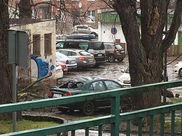 Wietrzny wieczór i noc w Trójmieście 13.03.2020. Zerwane dachówki, wyrwane drzewa i zablokowana trakcja kolejowa