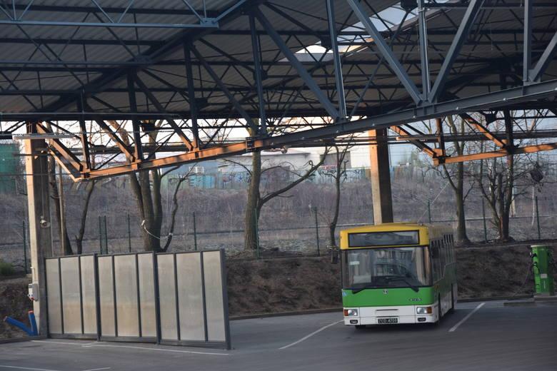 Miejski Zakład Komunikacji w Zielonej Górze wysyła na wskazane trasy podwójne pojazdy