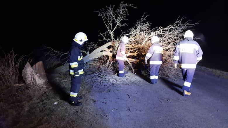 W poniedziałek po godz. 4 nad ranem straż pożarna z OSP KSRG Stubno została wysłana do powalonego drzewa na drodze Stubno - Gaje w powiecie przemyskim.