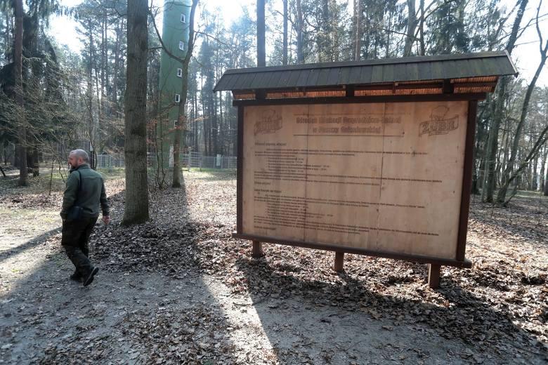 UWAGA! Duże zagrożenie pożarowe w lasach