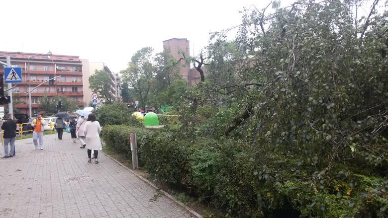 Straty materialne szczególnie w Chorzowie po przejściu burzy i traby powietrznej są znaczne. Zobaczcie więcej zdjęć