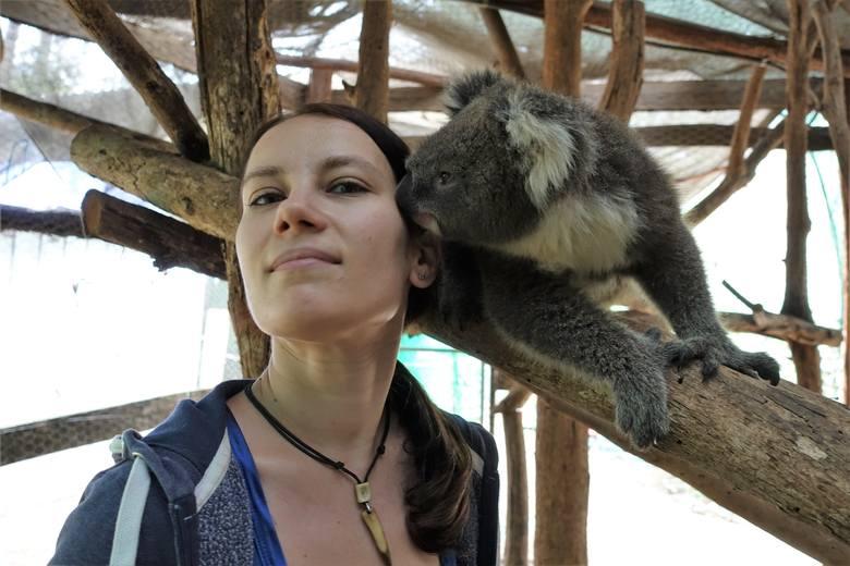 Są ofiarami ludzi. Turystów, którzy chcą wrócić z wakacji i chwalić się zdjęciem z małpką, czy lwem