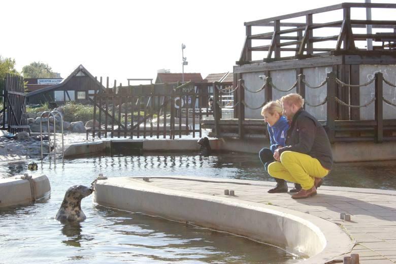 Reni Jusis dołączyła do Błękitnego Patrolu. Będzie ratować foki