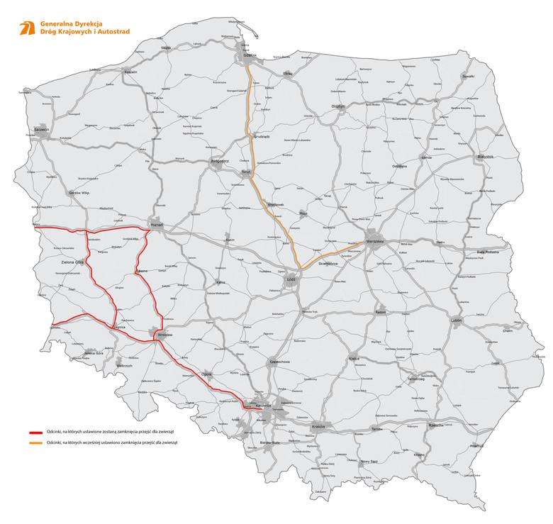 Odcinki dróg, które zostaną zabezpieczone specjalnym ogrodzeniem przeciw dzikom.