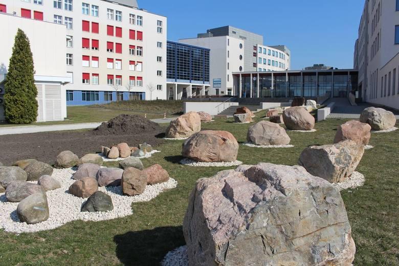 Lapidarium Instytutu Geografii Uniwersytetu Jana Kochanowskiego istniało już wcześniej. Dokładnie w tym samym miejscu, gdzie powstaje nowe. Odtworzenie