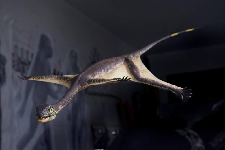 Zgierzanin odkrył latającego ozimka. To największy gad latający z triasu