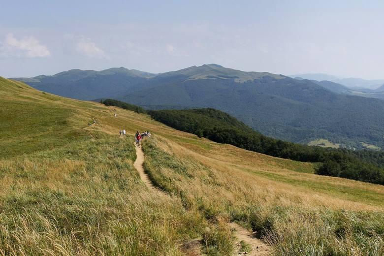 60 tysięcy turystów weszło na Tarnicę. Bieszczadzki Park Narodowy podsumował wakacyjną frekwencję na szlakach