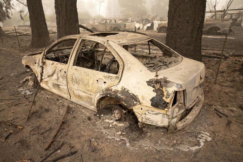 USA: 13-latek spłonął w samochodzie, chroniąc się przed pożarem. Na kolanach zginął skulony pies
