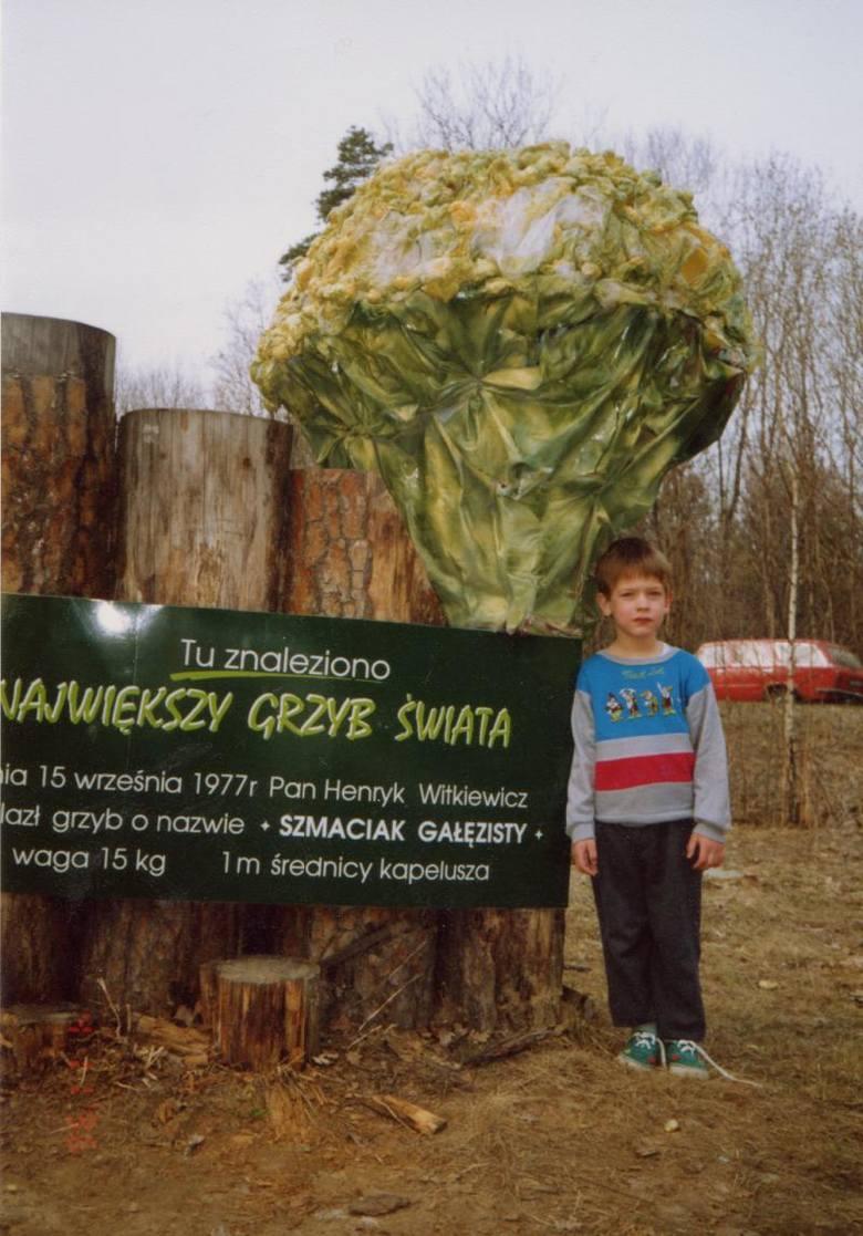 W Księdze Rekordów Guinnessa swojego czasu zagościł również polski grzyb. Znaleziony w Piotrkowicach w 1977 roku szmaciak gałęzisty ważył 15 kilogramów