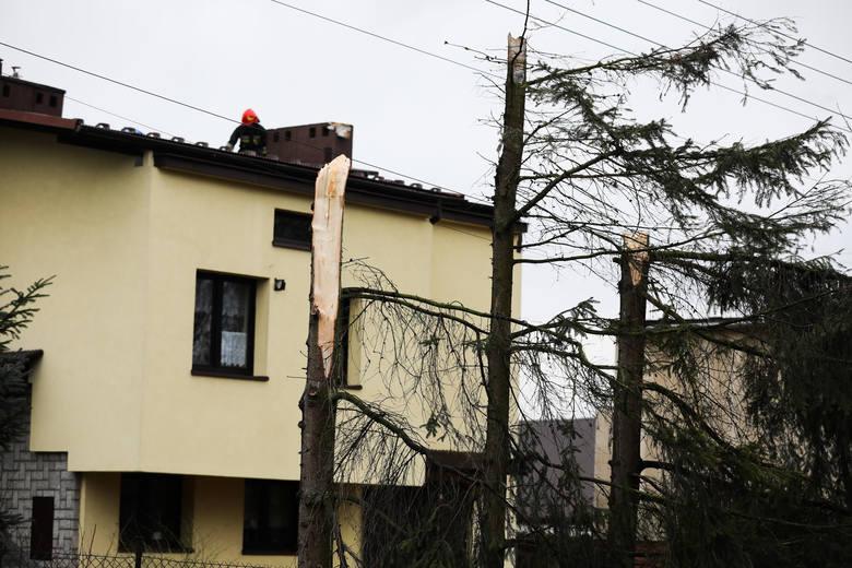 Orkan Sabina i jego skutki w Krakowie